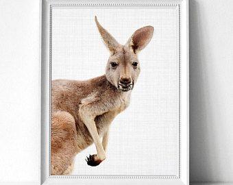 Kangaroo Print Kangaroo Wall Art Kangaroo Large Printable