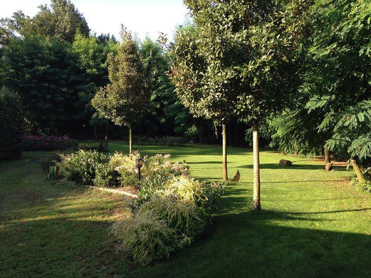 Giardino Privato - Campagna Cremonese - Linea Giardino