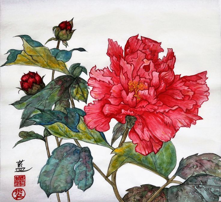 """""""Peony Blossom - Let There Be Peace""""  I painted this gongbi-style (aka meticulous style) on sized xuan paper. Peony in full bloom symbolises peace."""
