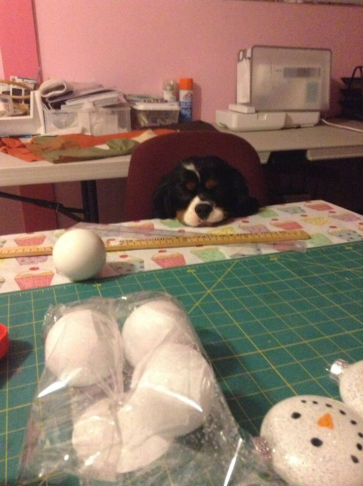 Crafting is hard work.