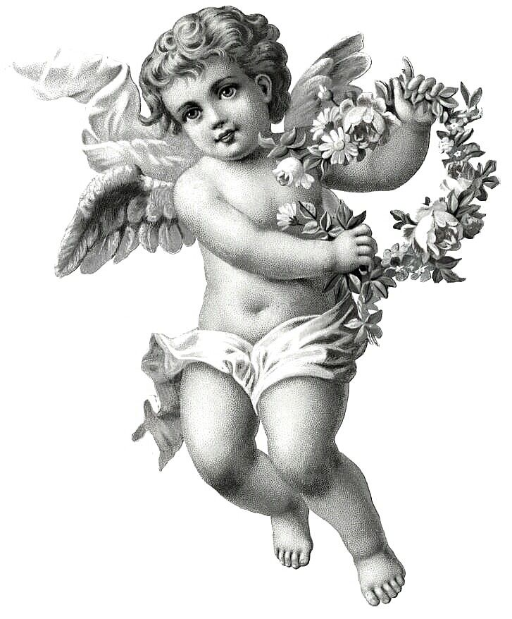 vintage angel drawing - Google Search                                                                                                                                                                                 More