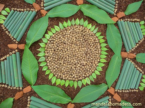 Mandala art made from tiny seed balls, buckeye leaf and budding blossoms...