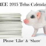 Free 2015 Calendar from Telus Canada ~ Still Available