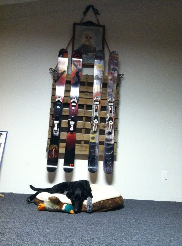 Pallet ski rack, but what I really love the moody dog with his toy duck...