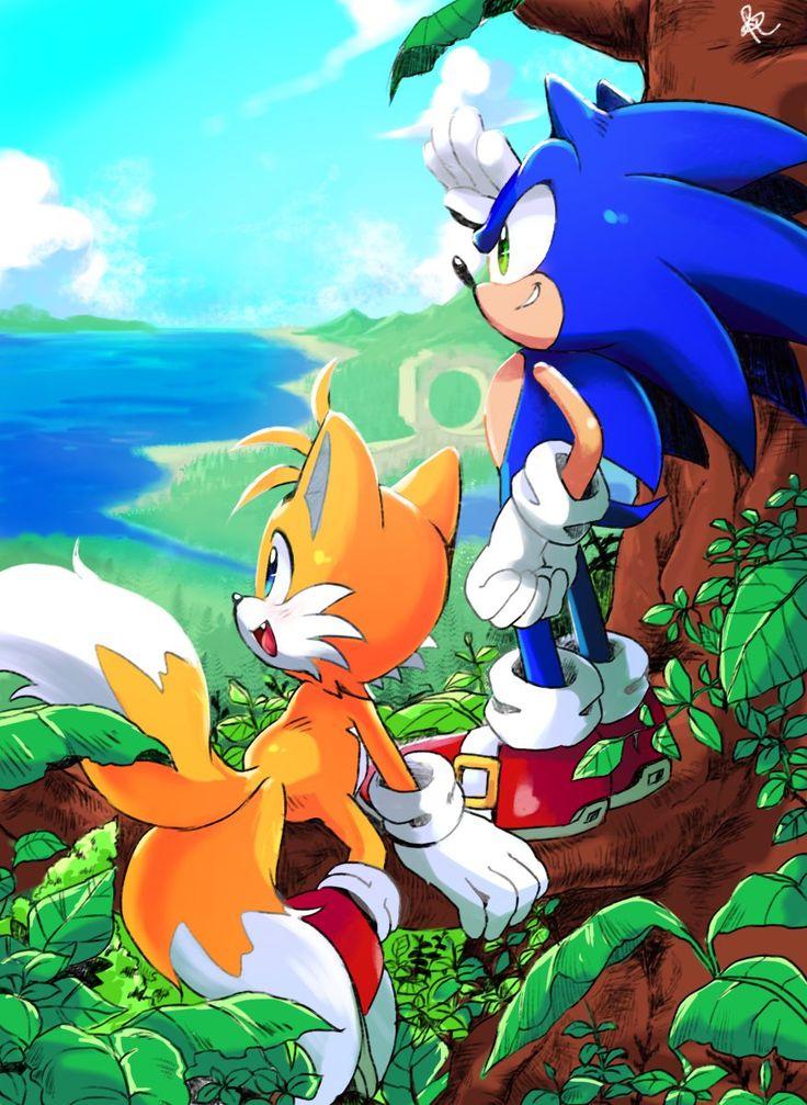 sonamy | Sonic and amy, Sonic, Sonic boom