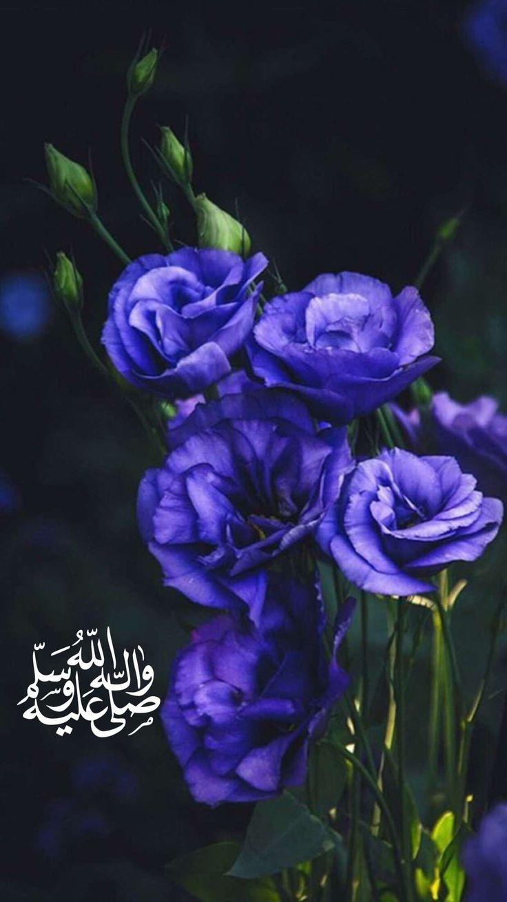Finde Diesen Pin Und Vieles Mehr Auf Arabic Words Von Fofo1405.