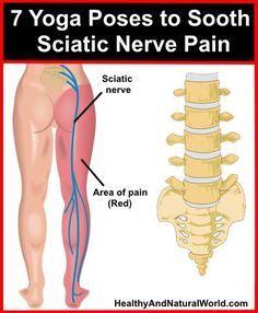 best 25+ sciatic nerve ideas on pinterest | siatic nerve, sciatica, Human Body