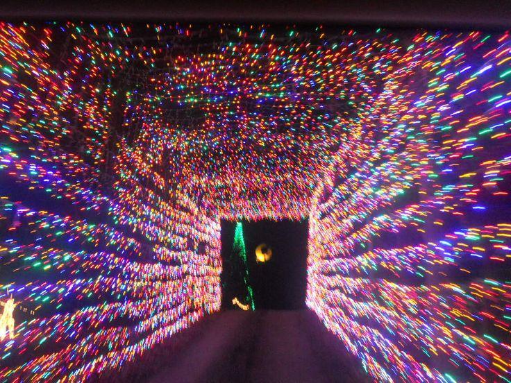 christmas lights christmas lights - Multicolor Christmas Lights