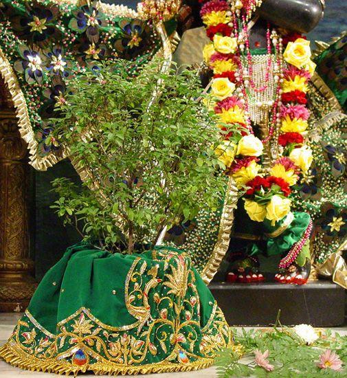 The Sampradaya Sun - Independent Vaisnava News - Feature Stories - May 2008