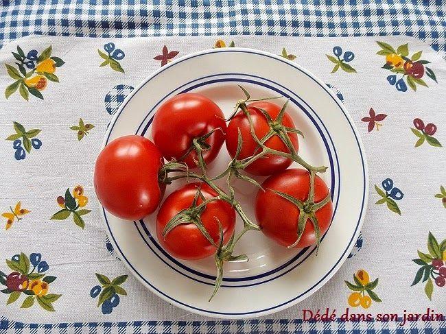 10 raisons pour planter des tomates