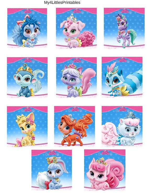 Disney Princess Palace Pets birthday by My4LittlesPrintables