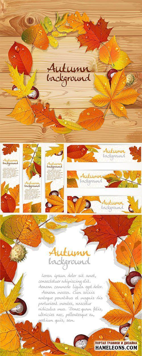Осенние листья и каштаны - осенние фоны и баннеры - Векторный клипарт   Autumn leaves vector