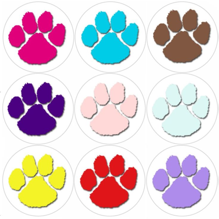 <p>These Puppy Paw Print themed reward stickers are perfect to make a big impression on young learners and can be used with any Reward System.</p>