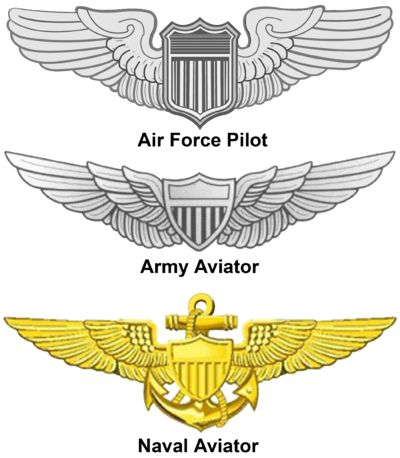 Air Force ~~~~ Master Army Aviator