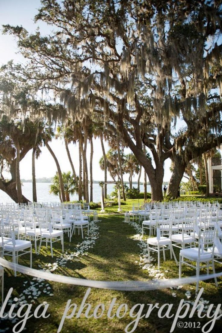 Affordable Wedding Venues Tampa Fl Mini Bridal