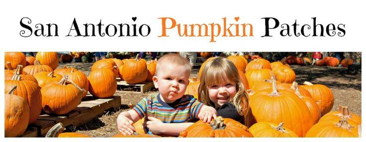 San Antonio Pumpkin Patches 2014 | San Antonio Mom Blogs ™