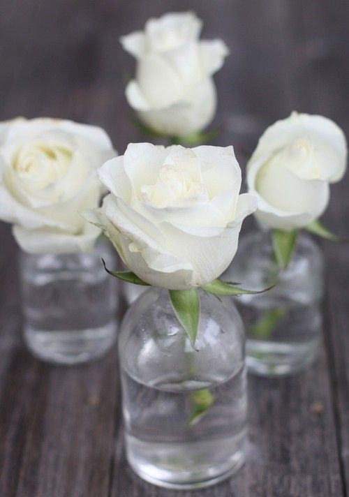 25 Best Ideas About Small Vases On Pinterest Small Rose Centerpiece Baby S Breath Wedding