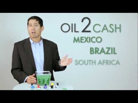 Oil-to-Cash: Fighting the Resource Curse through Cash Transfers | Center For Global Development