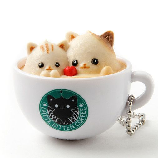Latte Kitten Coffee Straps: New Flavor Strawberry & Matcha Series
