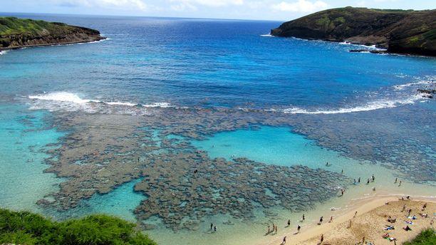 Hanauma Bay, Honolulu, Oahu, Hawaii — by Amanda Williams. Looking for a great, family-friendly place to go snorkeling on the Hawaiian island of Oahu? Look no further than...