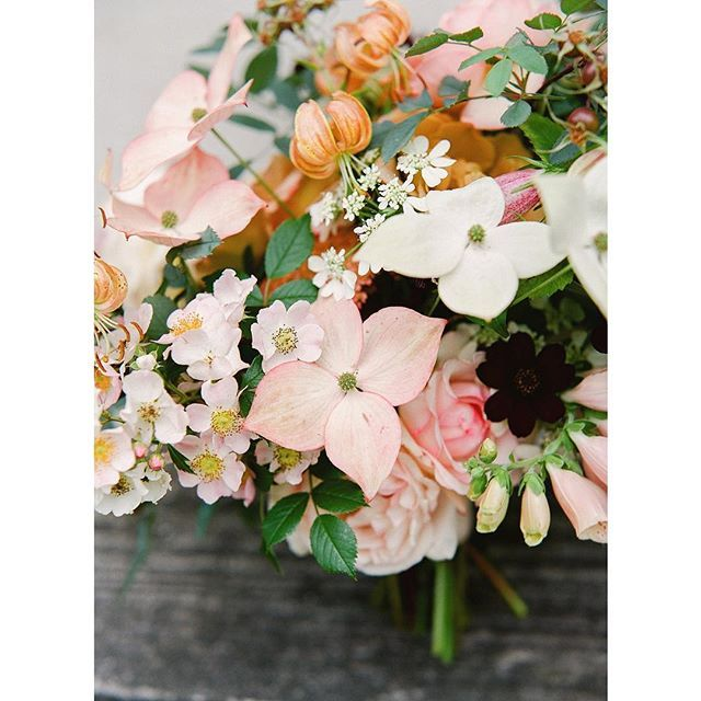 This is what farm-grown wedding flowers at Saipua looks like: Rosa glauca, foxglove, martagon lilies, kousa dogwood, lace orlaya; all grown here at Worlds End in July for Olivia and Jacob's wedding. Chocolate cosmos were from Kate @cedarfarmwholesale. Photo by @heatherwaraksa