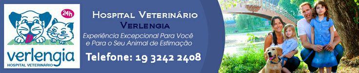 Hospital Veterinário Verlengia - Hospital Veterinário Em Campinas, Sao Paulo, Brazil :: Fotos do Hospital
