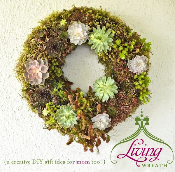 living wreath - decoration for back patio: Diy Tutorial, Wire Wreath