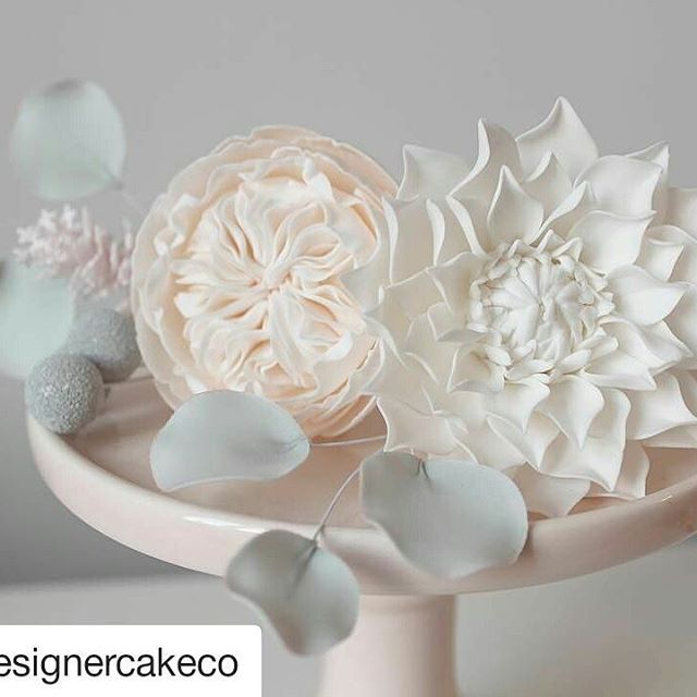 Flores de açúcar  inacreditavel #Repost @designercakeco with @repostapp ・・・ New flower class is now on our website and available to book! Last minute Christmas present maybe?   See www.thedesignercakecompany.co.uk/classes for more details and to book #sugarflowers #sugarflowerclass #gumpasteflowers #davidaustenrose #dahlia #eucalyptus #silverbrunia #astilbe #cakedecoratingclass #northeastcakes #northeastclass #designercakecompany #designercakeco
