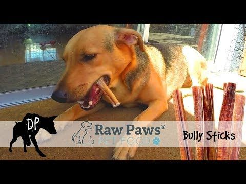 bully sticks review