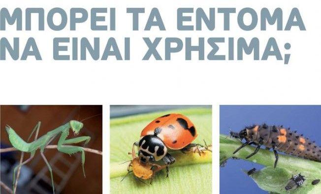 """Τα έντομα είναι η πολυπληθέστερη κλάση του ζωικού βασιλείου αφού αποτελεί περίπου το 75% των ζώων πάνω στη γη. Πολύ απλά, υπάρχουν παντού. Η πρώτη σκέψη των περισσοτέρων είναι πως κάνουν τη ζωή μας """"δύσκολη"""" και είναι ενοχλητικά. Τελικά είναι τα έντομα μια πληγή για το οικοσύστημα και τον άνθρωπο; Η χρησιμότητα των εντόμων στο οικοσύστημα είναι τεράστια. Συμβάλλουν στην ανακύκλωση των θρεπτικών στοιχείων μέσω της αποδόμησης της νεκρής οργανικής ύλης (σαπροφάγα είδη)."""