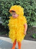 Feathered Duck Halloween Costume Boys/ Girls by gettinhitchedbride, $79.99