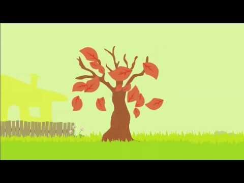 life cycle of an apple tree animation