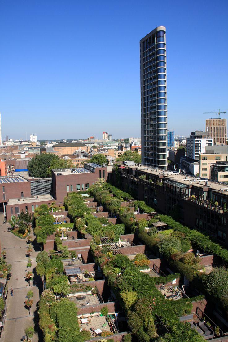 Tony Fretton on Neave Brown's last housing project, the Medina in Eindhoven of 2003    Words Tony Fretton Photos VvE Medina Eindhoven