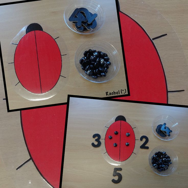 "Ladybird counting and simple addition from Rachel ("",)"