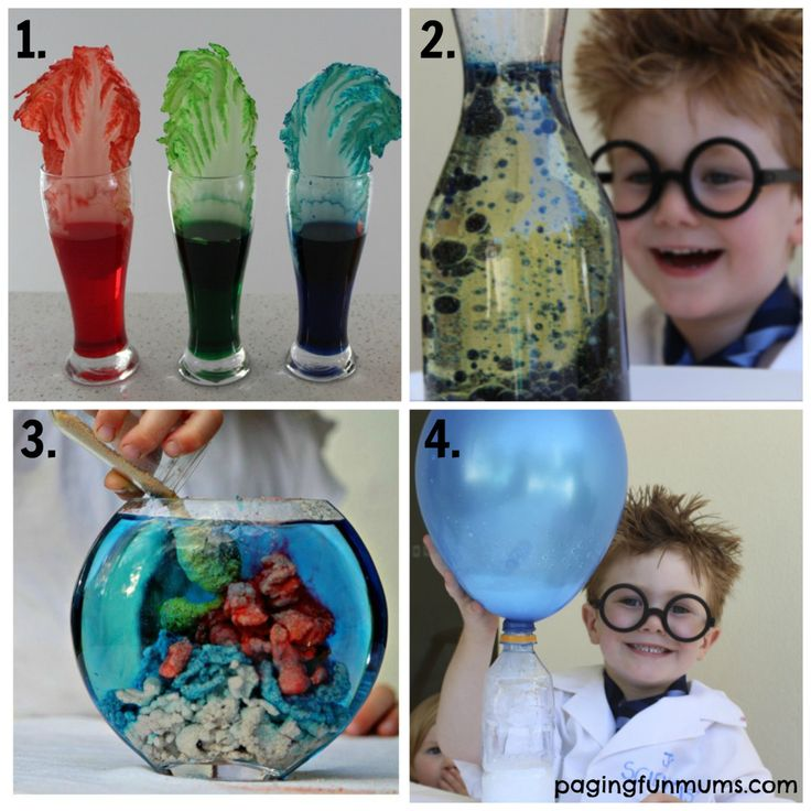 21 + Fun Science Experiments for Kids 1-4