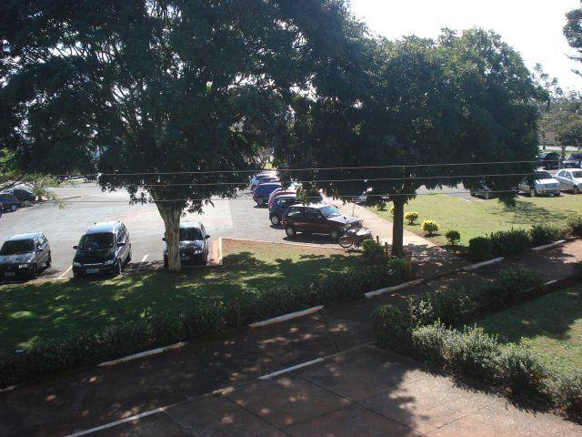 Pau-ferro e falso-barbatimão plantados em estacionamento. Além de embelezar a região proporcionam um sombreamento incrível.