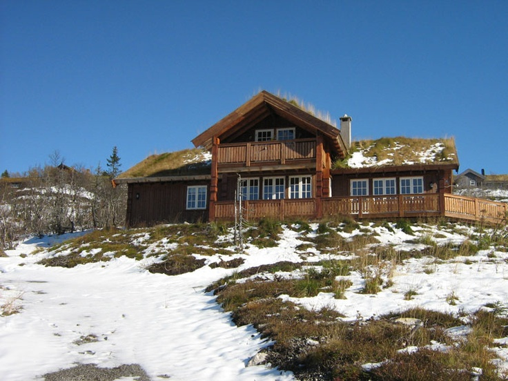 Cabin in the Vassfaret mountain area - Flå. This cabin is located 940 metres above sea level in the group of cabins called Damtjernhallin.