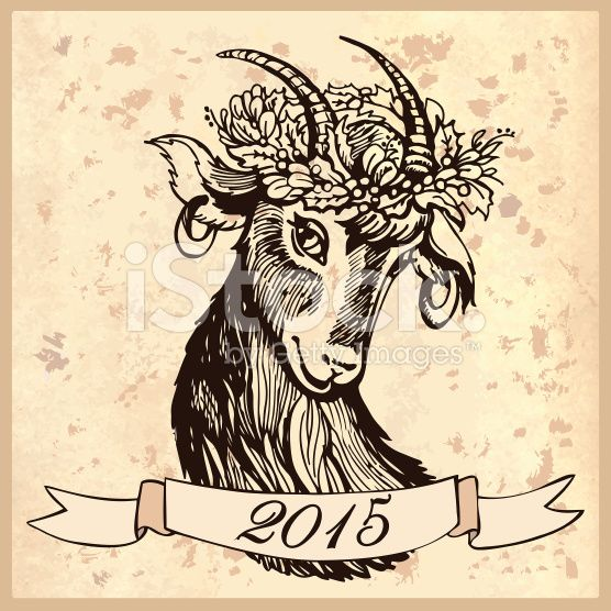 Sketch head of goat royalty-free stock vector art