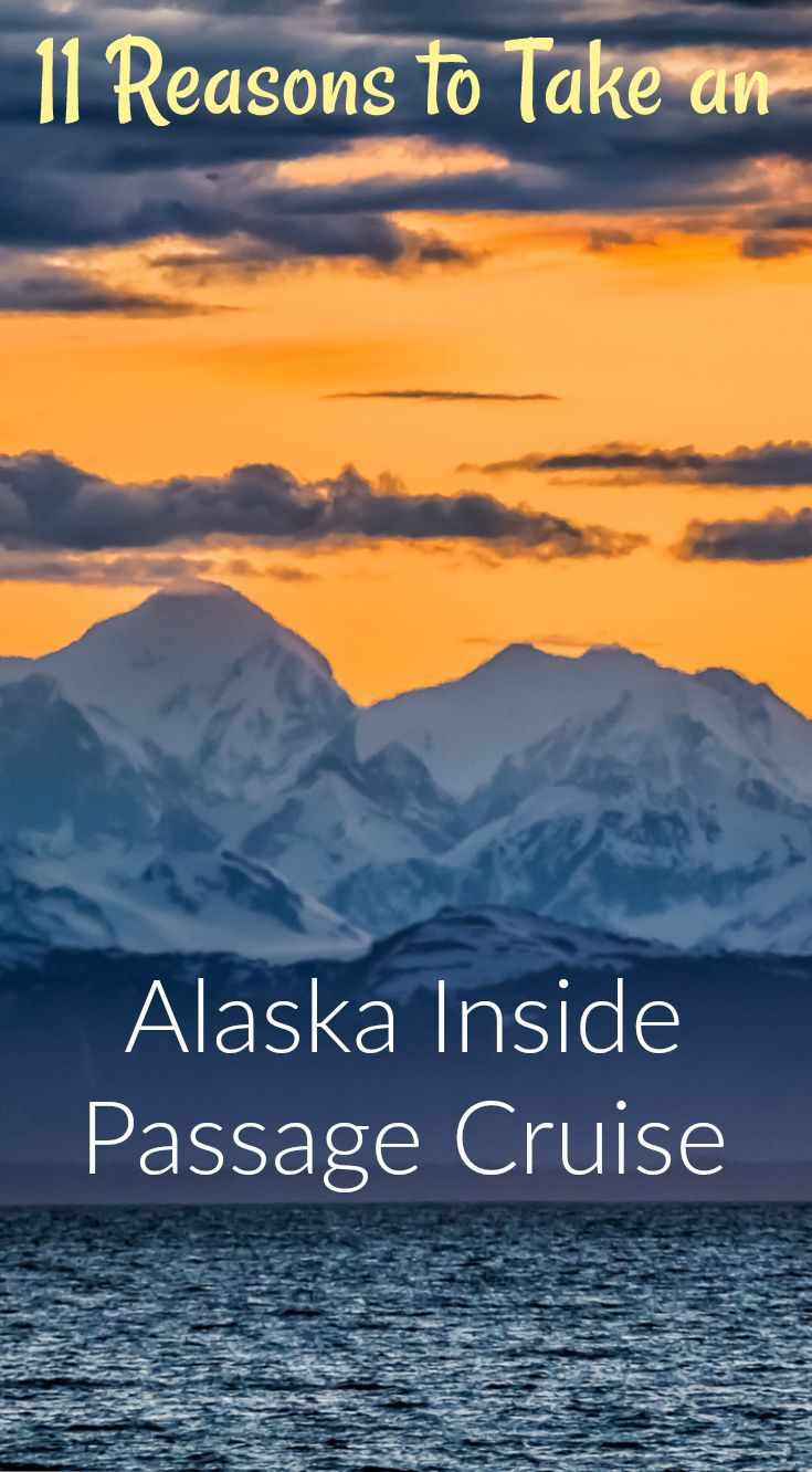 11 Reasons To Take A Alaska Inside Passage Cruise. Where to even start; I don't think anything could have prepared us for the experience we would have with UnCruise Adventures on our Inside Passage Cruise. Click to read the full travel blog post by the Divergent Travelers Adventure Travel Blog.