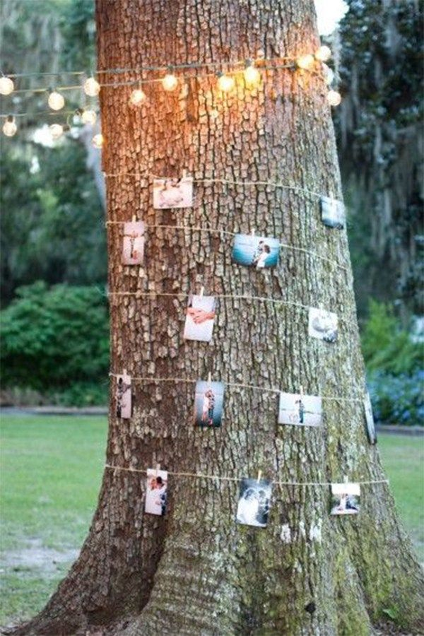 Wrap photos on twine around the trees at an outdoor wedding for a personal and unique decoration!