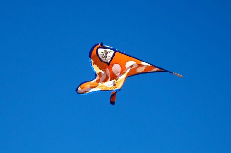 Leocorno flag