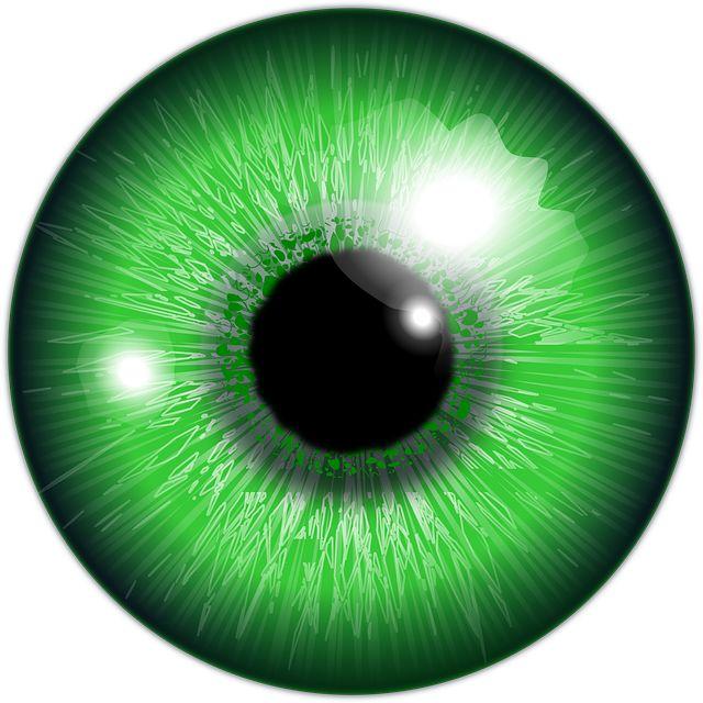 Olho, Verde, Íris, Globo Ocular - Imagem gratis no Pixabay