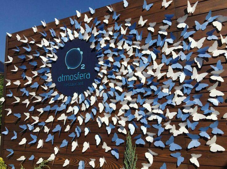 M s de 25 ideas incre bles sobre mariposa de tel n de for Papel de pared argentina
