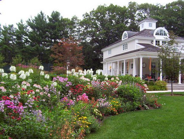 Exceptionnel Great Variety Patio Wildflower Gardening