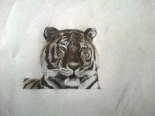 Colour pen sketch -tiger