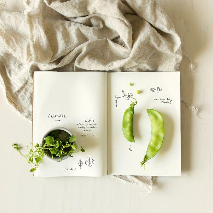 Plant-based Nutrition Still Life by Karina Sharpe, www.karinasharpe.com.au