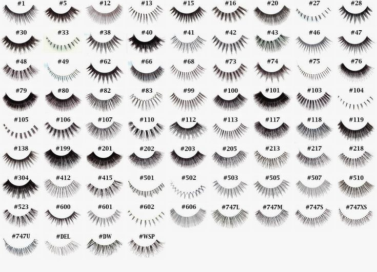 how to put on fake lashes for beginners