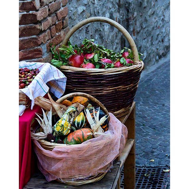 Szilvia Véghelyi @szilvia_veghelyi #fall #autumn #le...Instagram photo | Websta (Webstagram)