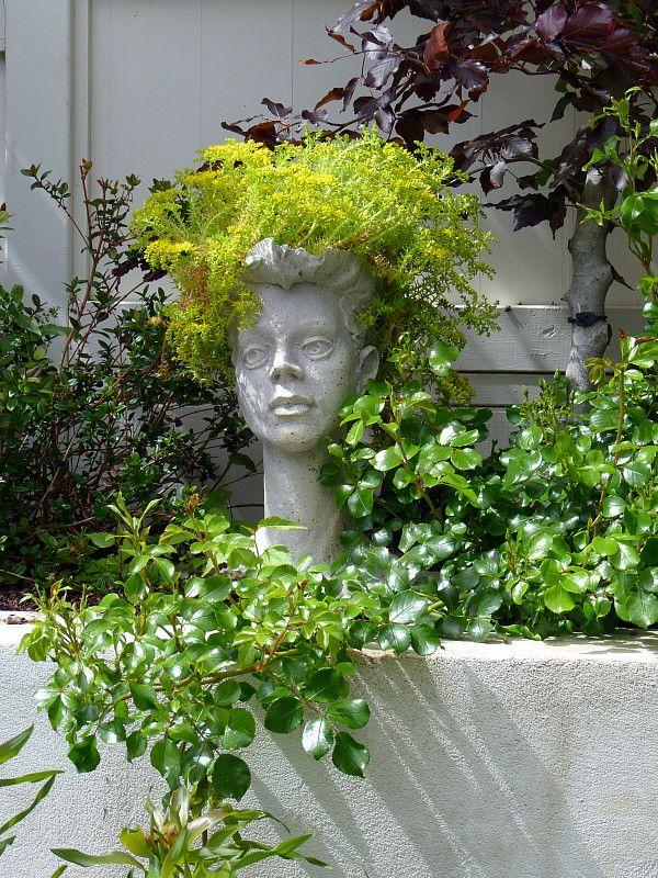 "Succulent hair Succulent hair, Sedum mexicana ""Acapulco Gold"" | A garden for all seasons ~ Beauchamp, HEDGE Garden Design & Nursery"