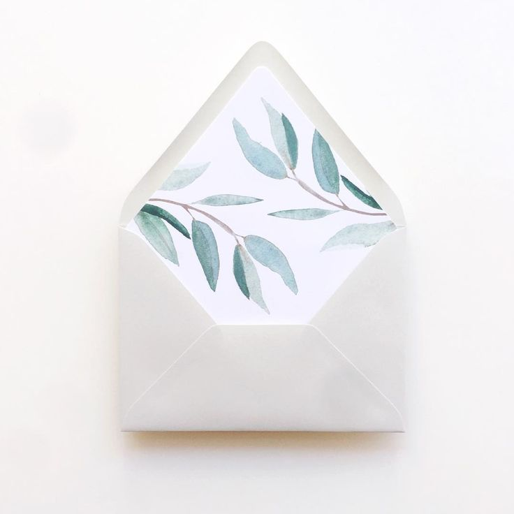 Lovely eucalyptus envelope liners                                                                                                                                                                                 More